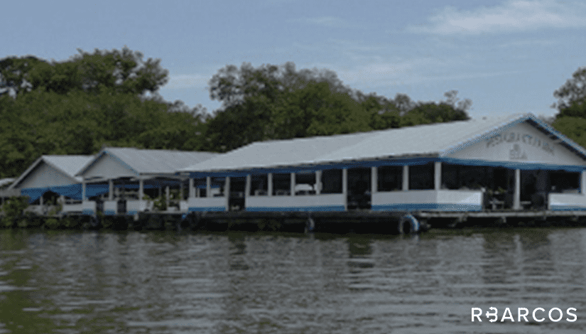 Contato Natureza Amazônica em Lancha 27 Pés - /