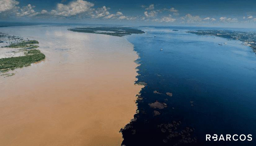 Safári Amazônico em Lancha 33 Pés  - /