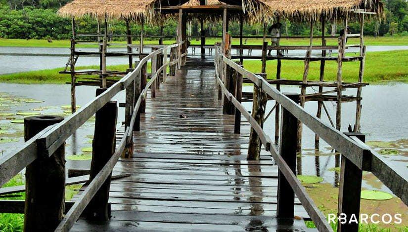Experiência Amazônica em Lancha 33 Pés  - /