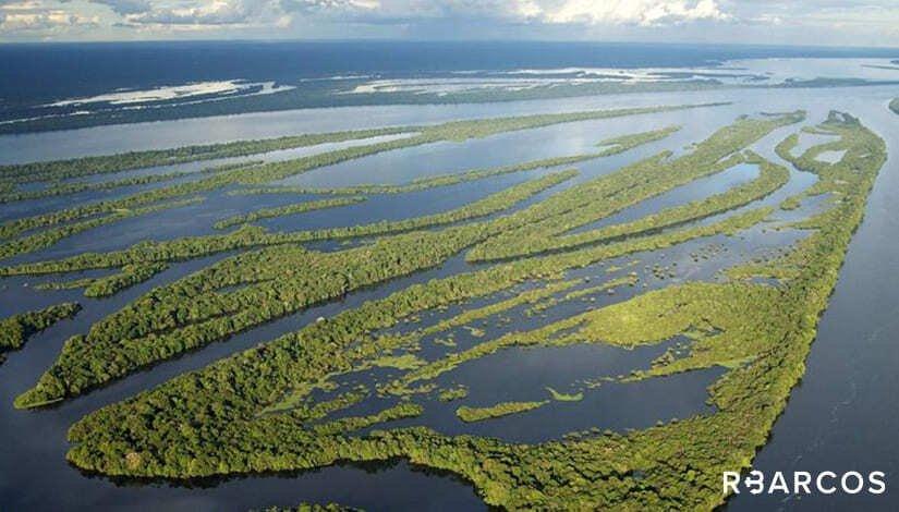 Belezas do Rio Negro em Barco 55 Pés - /